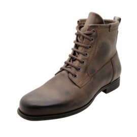 Bottines Hodge